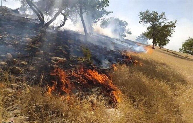 مصیبت جدید برای زاگرس؛ آتش سوزی گسترده در باشت